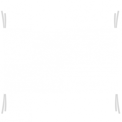 Флаг Bordarlands logo