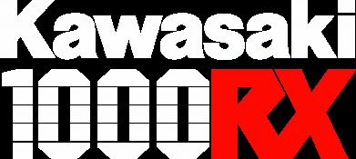Принт Детская кепка Kawasaki 1000RX - FatLine