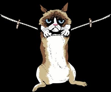 Принт Мужская толстовка Grumpy Cat On The Rope, Фото № 1 - FatLine