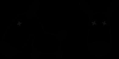 Принт Реглан перед и профиль - FatLine