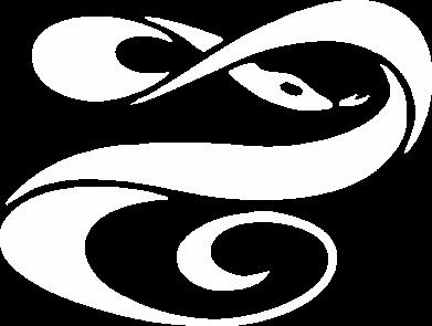 Принт Женская футболка с V-образным вырезом змеючка - FatLine