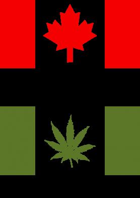 Принт Сумка Канада Как надо - FatLine
