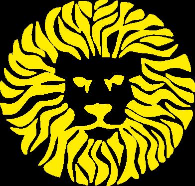 Принт Толстовка лев - FatLine