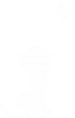 Принт Дитяча футболка котик і метелик - FatLine