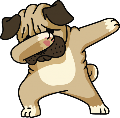 Принт Кепка Pug Swag, Фото № 1 - FatLine
