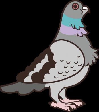 Принт Кепка Голубь, Фото № 1 - FatLine
