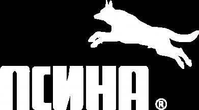 Принт Жіноча футболка Псіна, Фото № 1 - FatLine