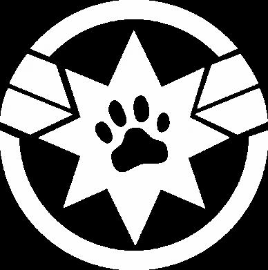 Принт Жіноча футболка Captain Marvel's Cat, Фото № 1 - FatLine
