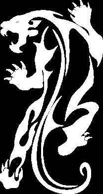 Принт Женская футболка Silhouette of a tiger, Фото № 1 - FatLine