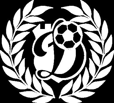 Принт Женская футболка Динамо Киев: мяч, колоски лого, Фото № 1 - FatLine