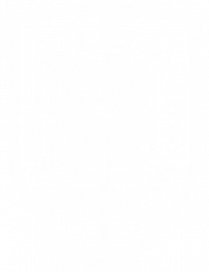 Принт Чоловіча футболка Call of Duty logo with shield, Фото № 1 - FatLine
