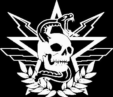 Принт Женская футболка Call of Duty cranium, Фото № 1 - FatLine