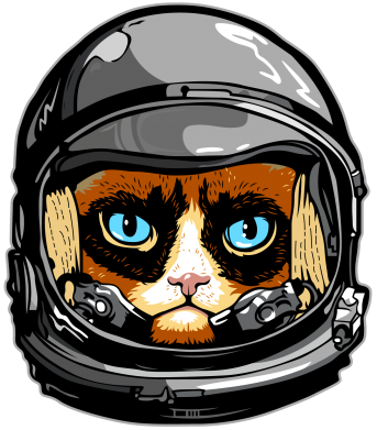 Принт Кружка 320ml Grumpy Cat Astronaut - FatLine