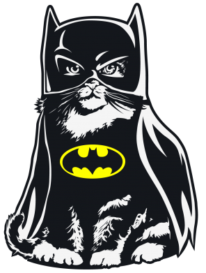 Принт Шапка Cat Batman - FatLine