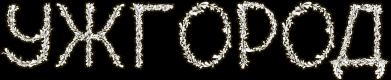 Принт Реглан (свитшот) Квітучий Ужгород - FatLine