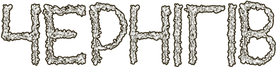 Принт Камуфляжная футболка Квітучий Чернігів - FatLine