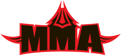 Принт Футболка MMA Pattern - FatLine