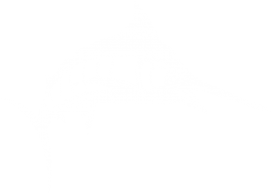 Принт Шапка Рыба Марлин - FatLine