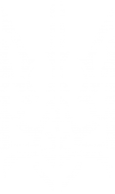 Принт Камуфляжная футболка Герб з металевих частин - FatLine
