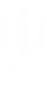 Принт Мужская толстовка на молнии Norfin - FatLine