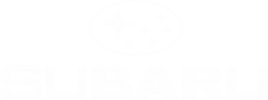 Принт Футболка з довгим рукавом Subaru - FatLine