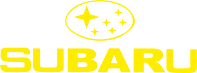Принт Жіноча футболка Subaru - FatLine