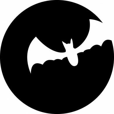 Принт Жіноча футболка Bat, Фото № 1 - FatLine