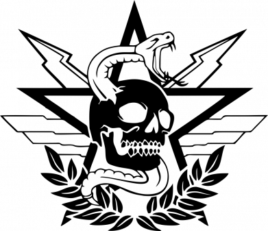 Принт Чоловіча футболка Call of Duty cranium, Фото № 1 - FatLine