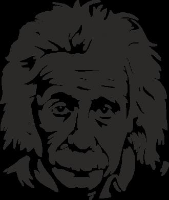 Принт Фляга Энштейн - FatLine