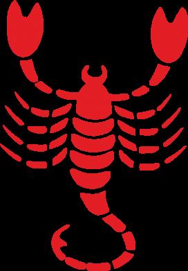 Принт Штаны скорпион - FatLine
