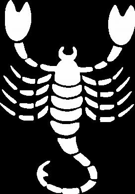 Принт Футболка с длинным рукавом скорпион - FatLine