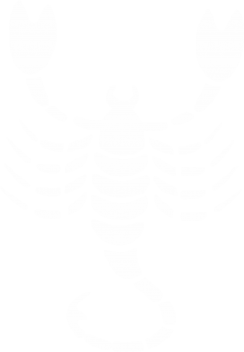 Принт Камуфляжна футболка скорпіон - FatLine