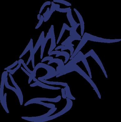 Принт Подушка скорпион 2 - FatLine