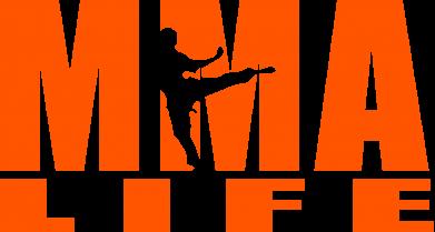Принт Футболка Поло MMA Life - FatLine