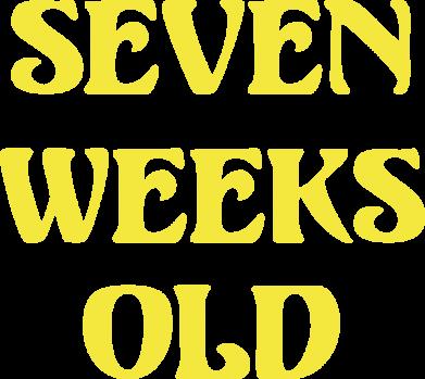 Принт Женская майка CrossFit  с гирей - FatLine