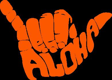 Принт Мужская толстовка Aloha Hawai, Фото № 1 - FatLine