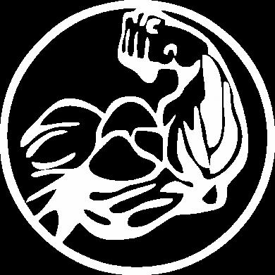 Принт Тільняшка з довгим рукавом Бодібілдинг - FatLine