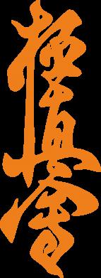 Принт Подушка Иероглиф - FatLine