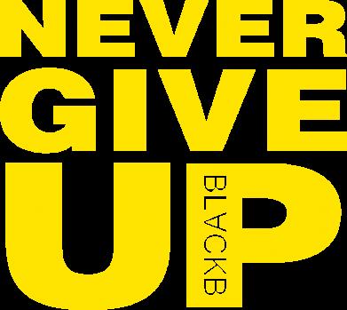 Принт Жіноча футболка Never give up 1, Фото № 1 - FatLine