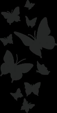 Принт Жіноча футболка Many butterflies, Фото № 1 - FatLine