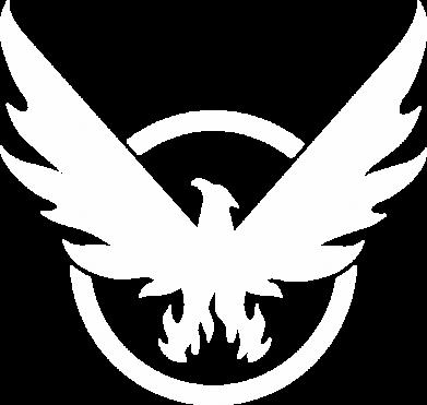 Принт Жіноча футболка The Division logo, Фото № 1 - FatLine