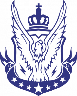 Принт Женская футболка Call of Duty eagle, Фото № 1 - FatLine