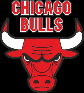 Принт Тельняшка с длинным рукавом Chicago Bulls vol.2 - FatLine