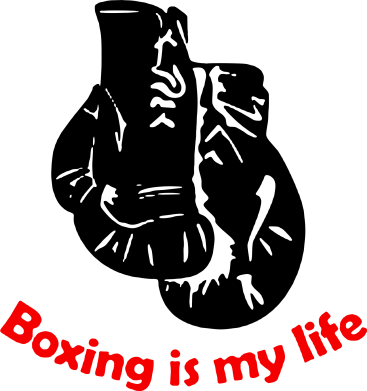 Принт Подушка Boxing is my life - FatLine