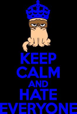 Принт Мужская футболка  с V-образным вырезом KEEP CALM and HATE EVERYONE - FatLine