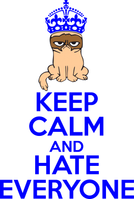 Принт Реглан (свитшот) KEEP CALM and HATE EVERYONE - FatLine