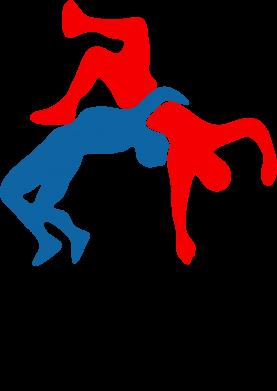 Принт Подушка Греко-римская борьба - FatLine