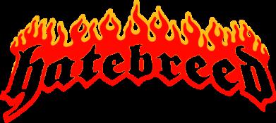 Принт Камуфляжная футболка Hatebreed - FatLine