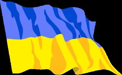 Принт Мужская толстовка на молнии Флаг - FatLine