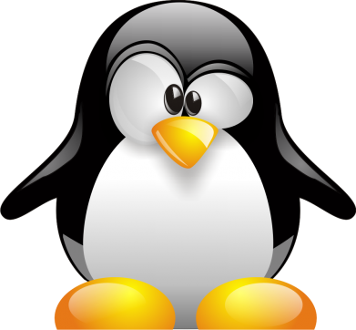 Принт Женская футболка с V-образным вырезом Пингвинчик - FatLine